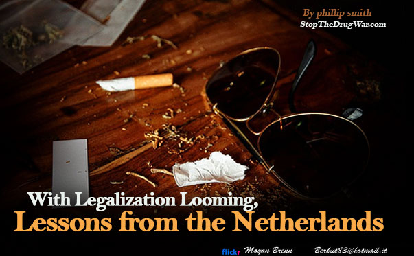 Lessons to Learn from netherlands