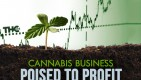 Marijuana Business News